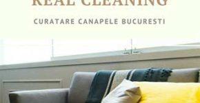 curatare canapele la domiciliu